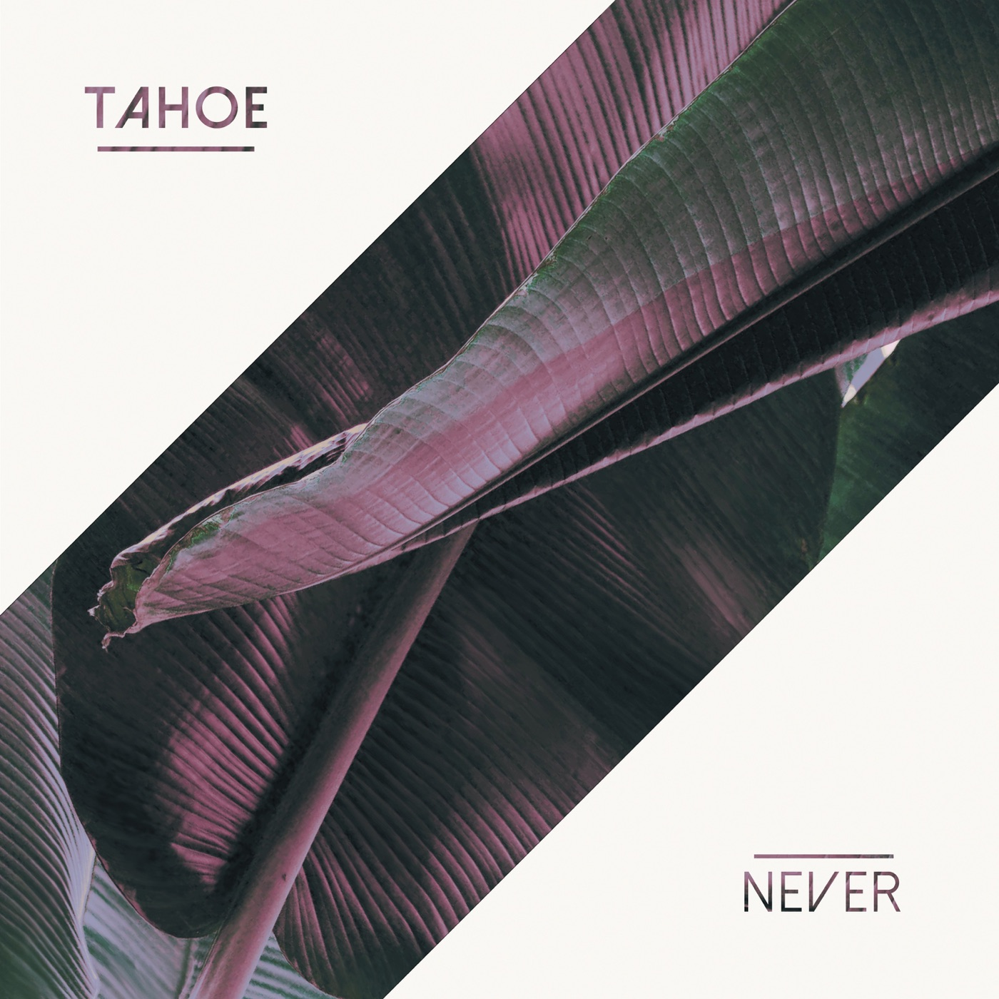 Tahoe - Never [EP] (2017)