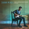 There's Nothing Holdin' Me Back (NOTD Remix) - Single, Shawn Mendes