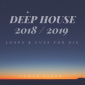 Tomer Aaron - Deep House 2018 / 2019 Loops & Cues for Djs обложка