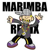 It's Everyday Bro (Marimba Remix Instrumental) - Lit To The Beat
