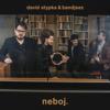 David Stypka & Bandjeez - Dobré ráno, milá (feat. Ewa Farna) artwork