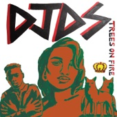 Trees On Fire (feat. Amber Mark & Marco Mckinnis) - DJDS