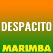 The Marimba Squad - Despacito (Marimba Remix) artwork