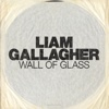 Wall of Glass - Liam Gallagher mp3
