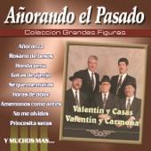 Gotas de Ajenjo - Valentin Y Casas