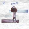 Lost Frequencies & Zonderling - Crazy artwork