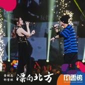 漂向北方 (Live)