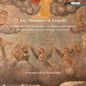 Ensemble Dulcis Melodia & Jean Francois Haberer - Les Musiciens de Leopold kunstwerk