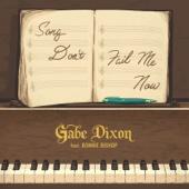 Song Don't Fail Me Now (feat. Bonnie Bishop) - Gabe Dixon