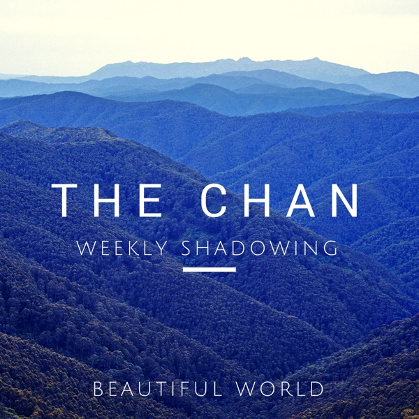 CHAN's Weekly Shadowing