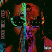 PnB Rock - Catch These Vibes  artwork