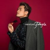 Fragile - Ha Anh Tuan