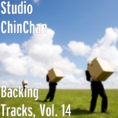 Backing Tracks, Vol. 14