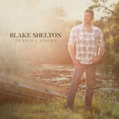 Blake Shelton - I'll Name the Dogs  artwork