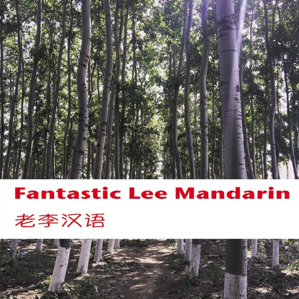 Fantastic Lee Mandarin老李汉语