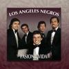Pasión y Vida, Los Ángeles Negros