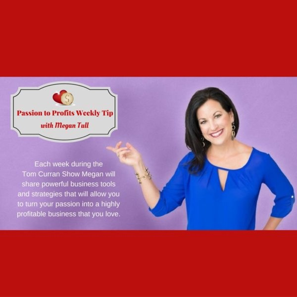 Passion-Profits-Inspiration-Success-Strategist-Megan-Tull