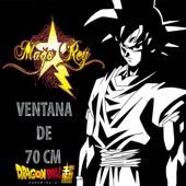 Ventana de 70 CM (Dragon Ball Super)