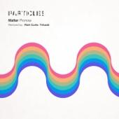 Pronoia (Rich Curtis Remix)