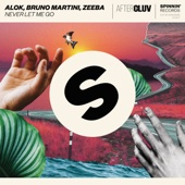 Never Let Me Go - Alok, Bruno Martini & Zeeba