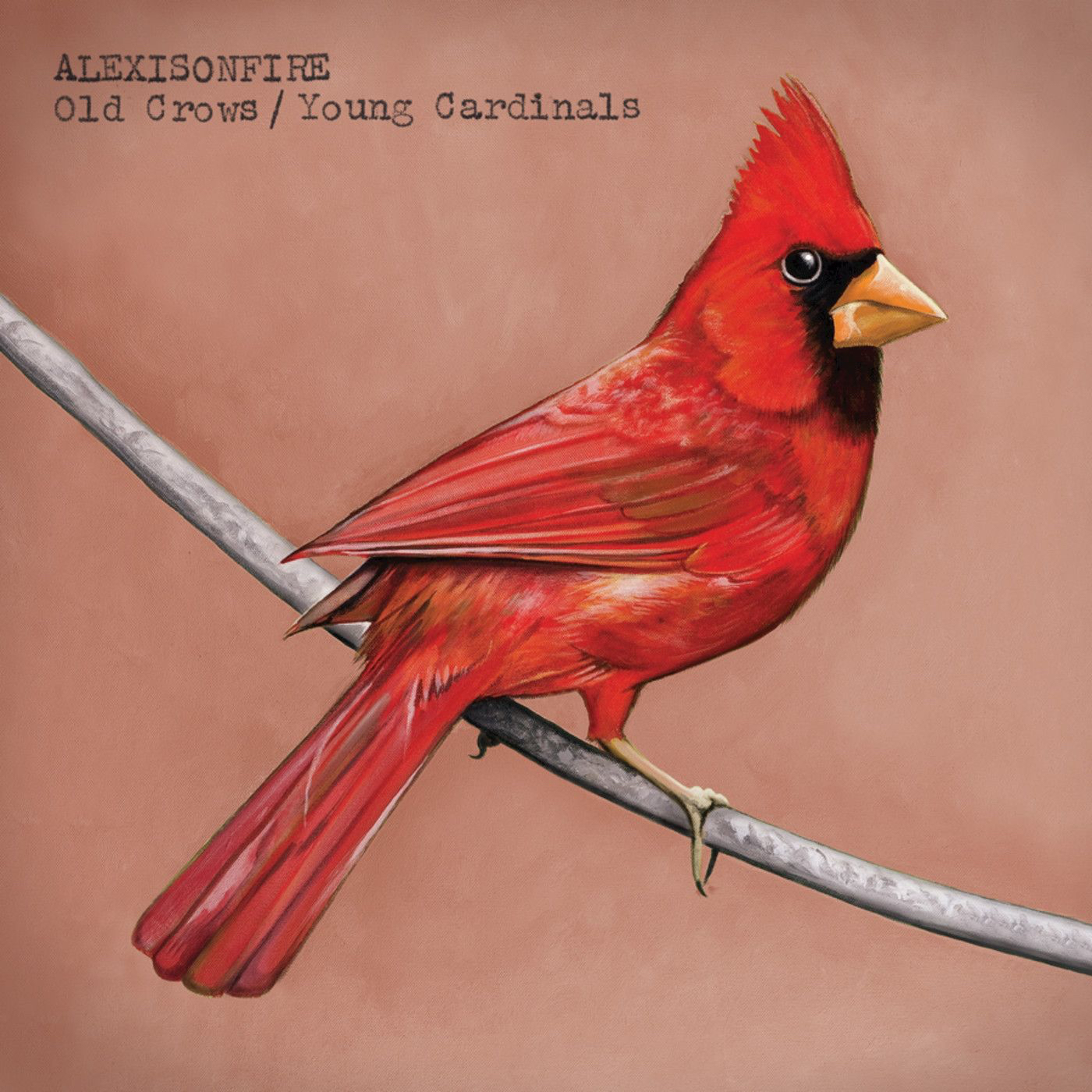 Alexisonfire - Old Crows / Young Cardinals (2009)