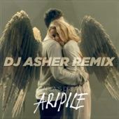 Aripile (DJ Asher Remix) - Single