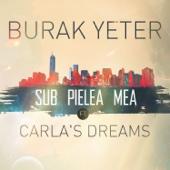 Sub Pielea Mea (feat. Carla's Dreams)