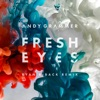 Fresh Eyes (Ryan Riback Remix) - Single, Andy Grammer