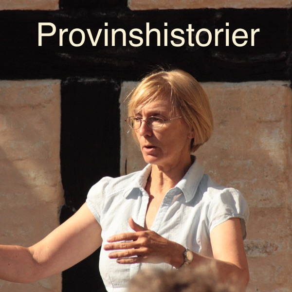 Provinshistorier