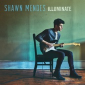 Shawn Mendes - There's Nothing Holdin' Me Back kunstwerk