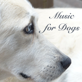 Music for Dogs - Sleeping Songs for Pet Therapy and Soothing Sounds to Send Your Dog to Sleep