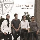 SE-Quartet - Going North bild