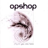 Opshop - No Ordinary Thing artwork