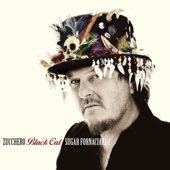 Zucchero - Ci Si Arrende (feat. Mark Knopfler) artwork
