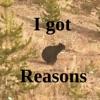 I Got Reasons