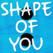 Shape of You (Originally Performed By Ed Sheeran) [Karaoke Version]