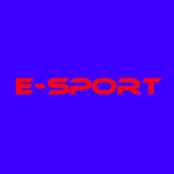 Ist E-Sport ein Sport?