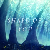 Shape of You (feat. Alyssa Poppin & Max Wrye)