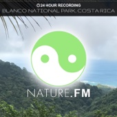 24 Hour Recording: Blanco National Park, Costa Rica (Nature Sounds for Meditation, Relaxation, Yoga, Baby Sleep, Spa, Chakra Balancing, Sound Therapy, Studying, Healing Massage, Insomnia and Deep Sleep) - Nature.FM