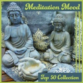 Meditation Mood – Top 50 Collection: Best New Age Music for Relaxation & Yoga & Spa & Massage