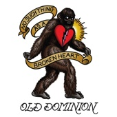 No Such Thing as a Broken Heart - Old Dominion Cover Art