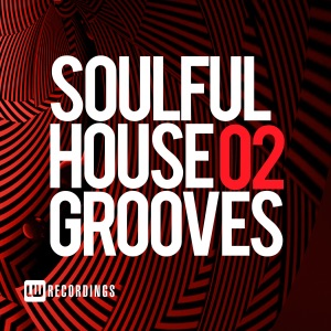 Soulful House Grooves, Vol. 02 - Various Artists