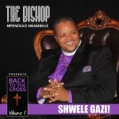Back To the Cross, Vol. 1 - Bishop Mpendulo Nkambule