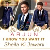 I Know You Want It - Sheila Ki Jawani