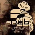 Seeb feat. Jacob Banks What Do You Love