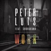 Work (feat. Shurakano) - Single
