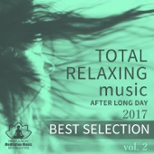 2017 Best Selection: Total Relaxing Music After Long Day Vol. 2, Evening Mindfulness Meditation, Yoga, Spa, Massage