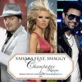 Champagne (feat. Shaggy) [Balkan Extended Remix]