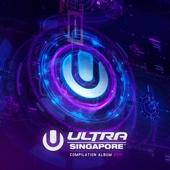 Ultra Music Festival Singapore 2017