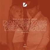 Dangerous Behaviour (Tom Ferry Extended Remix)